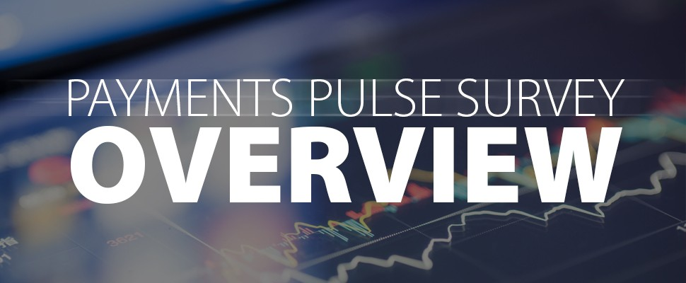 Payments Pulse