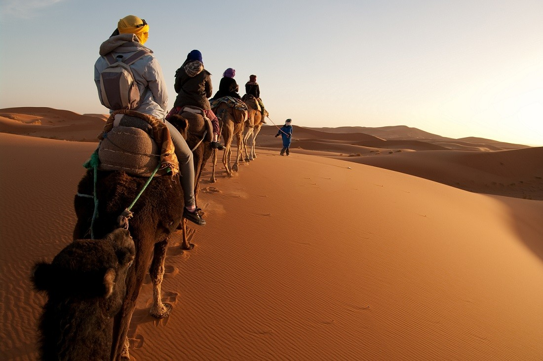 People on Camels